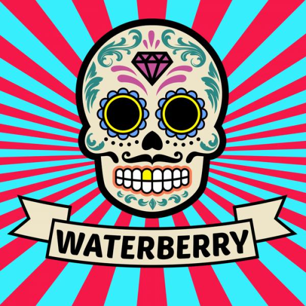 Waterberry Liquid